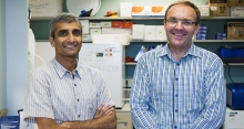 Vishy Iyer, professor of molecular genetics and microbiology, and Matt Cowperthwaite, research director of the NeuroTexas Institute at St. David's. Photo: Alex Wang